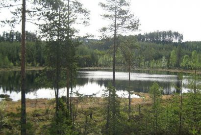 800px-Tjern_på_Finnskogen